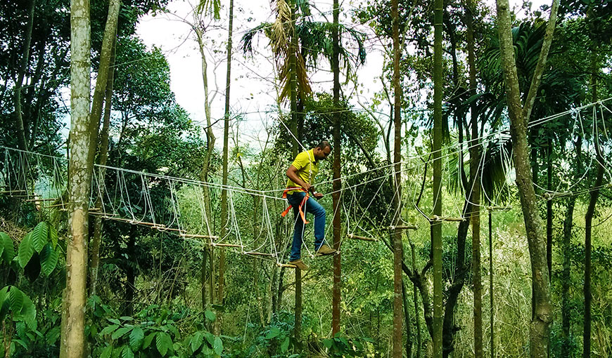 Burma Bridge activity in Wayanad provided by our resort in Wayanad for adventure activity