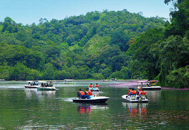 Indulge in the Boating Activity at Pookode Lake while staying at our hotel near Pookode lake