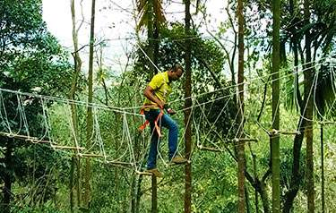 Burma bridge activity at our resort in Wayanad with adventure activities