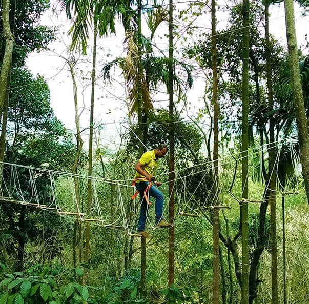 Burma Bridge activity at our adventure resort in Wayanad arranged for adrenaline junkies