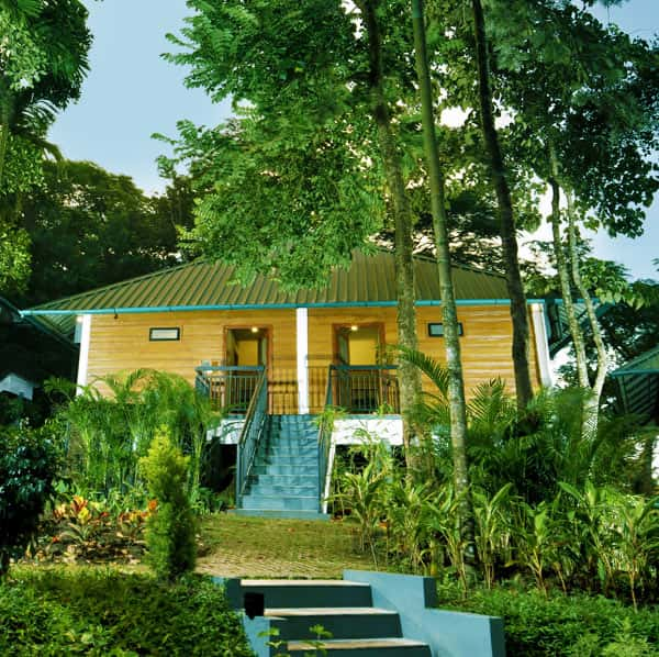 Wayanad cottages, an amazing retreat into nature