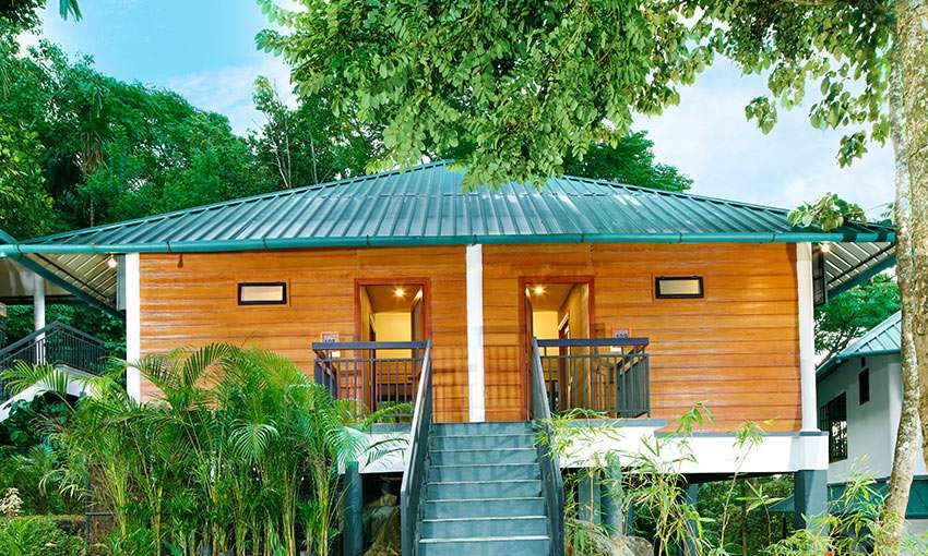 Our coffee resort in Wayanad offer spacious cottages that are a good place for accommodation in Wayanad