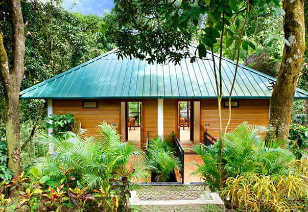 Cottages that are a Perfect Escapade into Nature