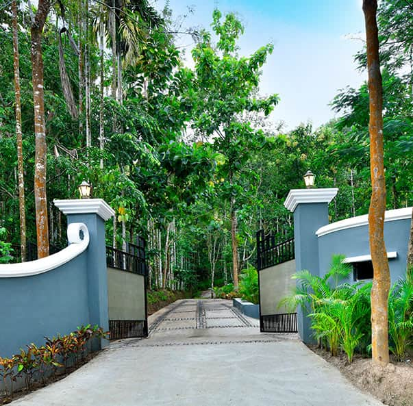 Wayanad Coffee Trail Resort offering a perfect escape for a holiday