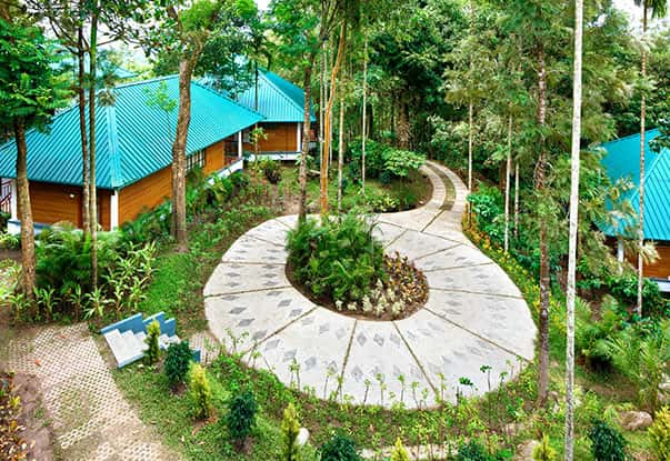 Resorts inside Wayanad plantation where you can enjoy your holidays to the core