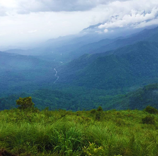 Neelimala View point Kalpetta, top attraction in Wayanad