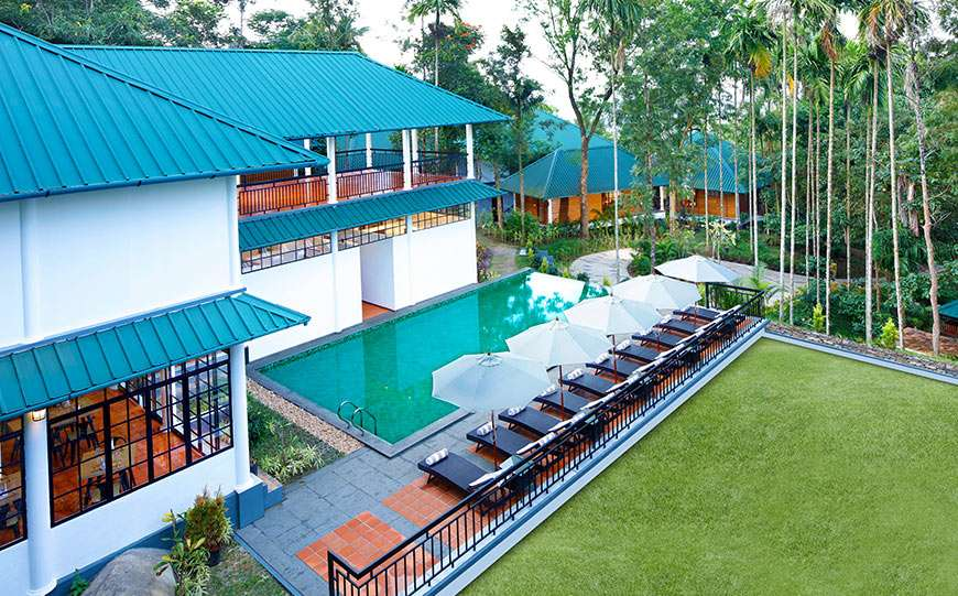 The swimming pool at our hotel in Wayanad overlooking the lush greenery and canopies