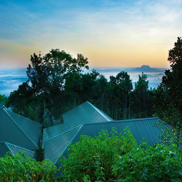 The Beauty of the Surroundings of our resort in Wayanad